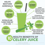 10 Benefits of Celery Juice Infographic